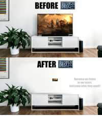 Blizzcon, They, and What: BEFORE  AFTER BA  Because we listen  to our users.  And know what they want Before Blizzcon 2018 and After