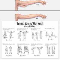 RT @FactofWorkout: Toned arms workout https://t.co/h1Qj2ALlmB: before  after  loned Arms Workout  afactsoftraining  Seated Lateral/Side Shoulder  Dumbbell Raises  Chair/Bonch Tricep Dips  Dumbbell Bent Over Lateral  Rear Delt Raises/ Flyes  Dumbbell Biceps Curl to  Shoulder Press  3 sets 10 reps  3 sets 10 reps  3 sets 10 reps  3 sets 10 reps  Cable Rope Overhead Triceps  Extensions  Dumbbell Bicep Reverse Curls Seated Dumbbel Concentration Bent Over Double Arm Tricep  Kickbacks  3 sets 12 reps  3 sets 12 reps  3 sets 12 reps  3 sets 10 reps RT @FactofWorkout: Toned arms workout https://t.co/h1Qj2ALlmB