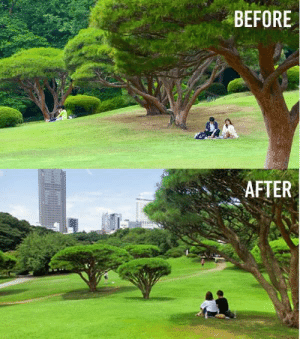 Dank, Japan, and 🤖: BEFORE  AFTER #Trashtag challenge in Japan