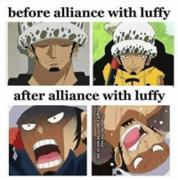 Memes and 🤖  before alliance with luffy after alliance with luffy 0ae3c15847ad
