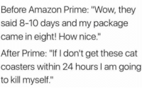 """Amazon, Amazon Prime, and Wow: Before Amazon Prime: """"Wow, they  said 8-10 days and my package  came in eight! How nice.""""  After Prime: """"If I don't get these cat  coasters within 24 hours I am going  to kill myself."""""""