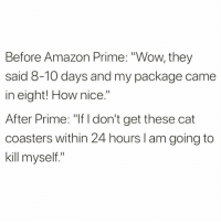 "Being Alone, Amazon, and Amazon Prime: Before Amazon Prime: ""Wow, they  said 8-10 days and my package came  in eight! How nice.""  After Prime: ""If I don't get these cat  coasters within 24 hours I am going to  kill myself."" I want it so I bought it because I'm using online shopping to mask how empty I feel inside and the fact that it's another year where I will be spending Vday alone but it's all good bc I bought cute coasters with little cat faces on them he he!!! Everything is great."