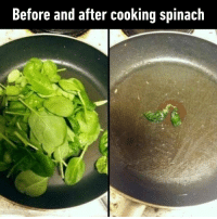 Dank, 🤖, and Spinach: Before and after cooking spinach Come on, I'm just trying to eat healthy here.