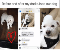 thanks dad: Before and after my dad ruined our dog  Snapc....00 LTE 11:40 AM  イ61% ■  KO  New look!  Momma  Oh no! Is that a  Mohawk? He looks  ridiculous!  Dad ICE  It's awesome  Loat  dad why  Message thanks dad