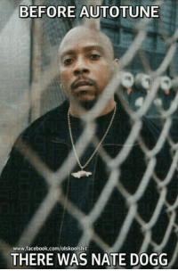 Facebook, Memes, and Nate Dogg: BEFORE AUTOTUNE  www.facebook.com/olskoolshit  THERE WAS NATE DOGG