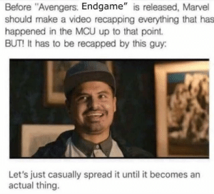 "Dank, Memes, and Target: Before ""Avengers: Endgame"" is released, Marvel  should make a video recapping everything that has  happened in the MCU up to that point.  BUT! It has to be recapped by this guy:  Let's just casually spread it until it becomes an  actual thing. Spreddit by Zach1706 MORE MEMES"