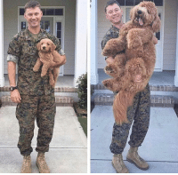 Memes, 🤖, and Deployment: Before Deployment...After Deployment~