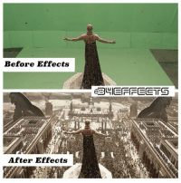 25+ Best After Effects Memes | —˜ Memes, Before After Memes