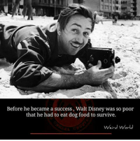 Memes, Walt Disney, and 🤖: Before he became a success, Walt Disney was so poor  that he had to eat dog food to survive.  Weird World