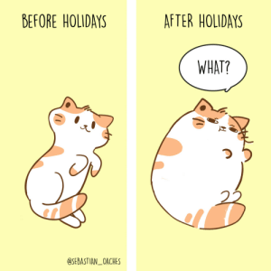 [OC] WHAT?: BEFORE HOLIDAYS  AFTER HOLIDAYS  WHAT?  SEBASTIAN_OACHES [OC] WHAT?