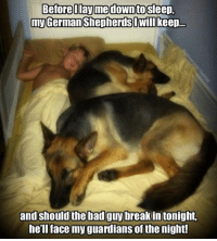Sleep well, you are protected! ❤️: Before Iayme downto Sleep,  my German ShepherdsDwill keep...  and should the bad guy breakin tonight.  he'll face my guardians of the night! Sleep well, you are protected! ❤️