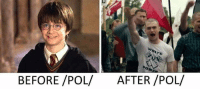 Dank, 🤖, and Before Pol After Pol: BEFORE /POL/  AFTER /POL/ #MakeSoci3tyGreatAgain