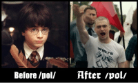 Harry potter and the deadly holocaust: Before /poll  After /pol/ Harry potter and the deadly holocaust