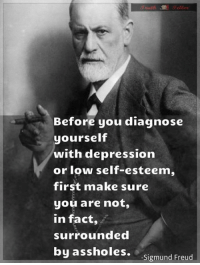 2/3 Patients on Anti-depressants… Aren't Depressed - Read more: https://goo.gl/g6UKCO: Before you diagnose  yourself  with depression  or low self-esteem,  first make sure  you are not,  in fact,  surrounded  by assholes.  -Sigmund Freud 2/3 Patients on Anti-depressants… Aren't Depressed - Read more: https://goo.gl/g6UKCO