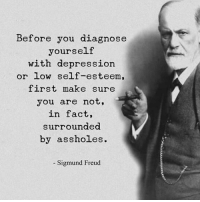 Memes, Sigmund Freud, and Depression: Before you diagnose  yourself  with depression  or low self-esteem,  first make sure  you are not,  in fact,  surroundea  by assholes.  Sigmund Freud I am surrounded by Idiots 🤦🏻‍♂️ Like if you agree