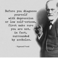 👌: Before you diagnose  yourself  with depression  or low self-esteem,  first make sure  you are not,  in fact,  surrounded  by assholes.  Sigmund Freud 👌