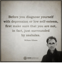 First make sure your are not, in fact, just surrounded by assholes...: Before you diagnose yourself  with depression or low self-esteem,  first make sure that you are not,  in fact, just surrounded  by assholes.  William Gibson  HIGHER  PERSPECTIVE First make sure your are not, in fact, just surrounded by assholes...