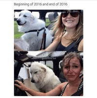 @hilarious.ted has an awesome page make sure to follow!! 🔥👣👣 Pic credit @kel_bone - teamnoharmdone noharmdone funny relatable true lmao petty savage dank meme weed 420 makeup gym lfl food dog doggo art guns 2016 aww: Beginning of 2016 and end of 2016  @hilarious. ted @hilarious.ted has an awesome page make sure to follow!! 🔥👣👣 Pic credit @kel_bone - teamnoharmdone noharmdone funny relatable true lmao petty savage dank meme weed 420 makeup gym lfl food dog doggo art guns 2016 aww