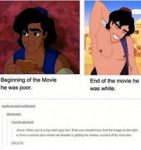 Aladdin, Memes, and Cartoon: Beginning of the Movie  he was poor.  End of the movie he  was white.  euphoria-and-sunflow  damaseas  chocho-akimichi  Jesse I think you're a top notch guy but I think you should know that the image on the right  is from a cartoon porn where ole Aladdin is getting his meatus sucked off by Hercules  DELETE Kids and their imagination these days 😩
