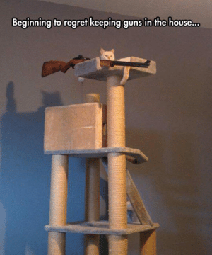 srsfunny:He Just Got Tired Of The Red Dot: Beginning to regret keeping guns in the house srsfunny:He Just Got Tired Of The Red Dot