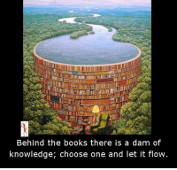 let it flow: Behind the books there is a dam of  knowledge, choose one and let it flow