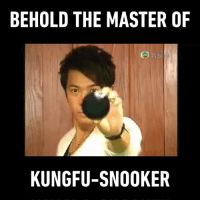 Dank, Soccer, and Masters: BEHOLD THE MASTER OF  KUNG FU-SNOOKER First there was Shaolin Soccer, and then here comes Kungfu-Snooker. (credit:  TVB )
