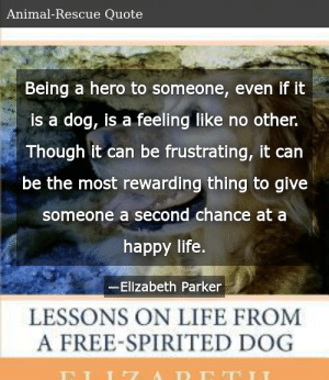 Elizabeth Parker-Finally Home: Lessons On Life From A Free ...