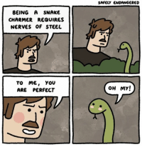 Steel, Me You, and Perfect: BEING A SNAKE  CHARMER REQUIRES  NERVES OF STEEL  TO ME.  YOU  ARE PERFECT  SAFELY ENDANGERED  OH MY!