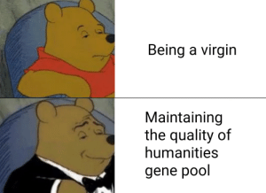 Virgin, Pool, and Dank Memes: Being a virgin  Maintaining  the quality of  humanities  gene pool A matter of perspective
