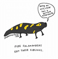 Facts, Fire, and Memes: being  an  only terrible.  animal facts  sad Com  FIRE SALAM ANDERS  EAT THEIR SIBLINGS. Happy National Sibling Day from the world's worst sibling. nationalsiblingday sadanimalfacts