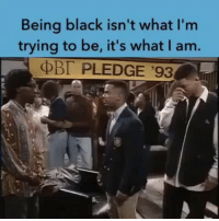 """""""As Black families gain wealth in America I can imagine many people will see them as not black because they don't think they share their struggles. Let's not divide As we conquer."""" 👌✌🏾❤️ Repost @mediablackoutusa: Being black isn't what I'm  trying to be, it's what I am.  PLEDGE '93 """"As Black families gain wealth in America I can imagine many people will see them as not black because they don't think they share their struggles. Let's not divide As we conquer."""" 👌✌🏾❤️ Repost @mediablackoutusa"""