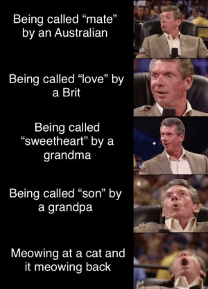 """Omg wow, I mean she usually never warms up to people so quickly like that!"": Being called ""mate""  by an Australian  Being called ""love"" by  a Brit  Being called  ""sweetheart"" by a  grandma  Being called ""son"" by  a grandpa  Meowing at a cat and  it meowing back  WF ""Omg wow, I mean she usually never warms up to people so quickly like that!"""