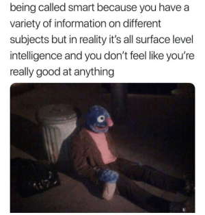 Good, Information, and Reality: being called smart because you have a  variety of information on different  subjects but in reality it's all surface level  intelligence and you don't feel like you're  really good at anything Me irl