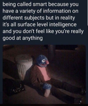 """smart"": being called smart because you  have a variety of information on  different subjects but in reality  it's all surface level intelligence  and you don't feel like you're really  good at anything ""smart"""