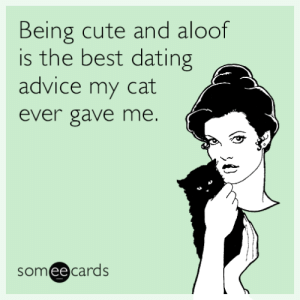 memehumor:  Being cute and aloof was the best dating advice my cat ever gave me.: Being cute and aloof  is the best dating  advice my cat  ever gave me.  someecards  ее memehumor:  Being cute and aloof was the best dating advice my cat ever gave me.
