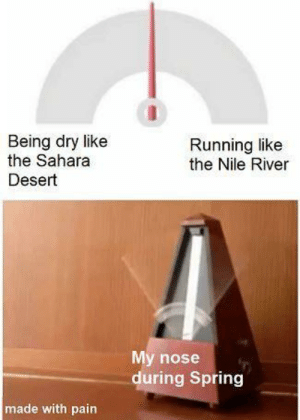 Spring, Pain, and Running: Being dry like  the Sahara  Running like  the Nile River  Desert  My nose  during Spring  made with pain meirl