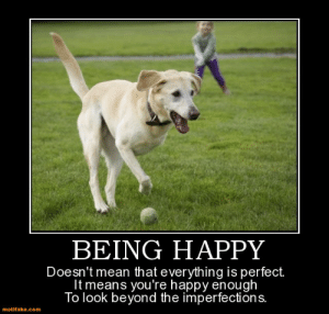 Happy, Mean, and Com: BEING HAPPY  Doesn't mean that everything is perfect  It means you're happy enough  lo look beyond the imperfections  motifake.com