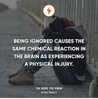 chemical reaction: BEING IGNORED CAUSES THE  SAME CHEMICAL REACTION IN  THE BRAIN AS EXPERIENCING  A PHYSICAL INJURY  THE MORE YOU KNOW  @FACTBOLT