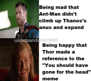 """Head, Meme, and Memes: Being mad that  Ant-Man didn't  climb up Thanos's  anus and expand  hich666  u/idiotsandv  Being happy that  Thor made a  reference to the  """"You should have  gone for the head""""  meme Endgame memes?"""