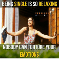 Memes, Being Single, and 🤖: BEING  SINGLE  IS SO  RELAXING  FEELINGS  Feelings  Lee.  NOBODY CAN TORTURE YOUR  EMOTIONS
