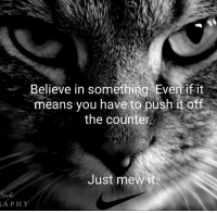 Memes, 🤖, and Means: Believe in something. Eventif it  means ytue eolemio nujsnd ot  the counter  Just mewit  APHY