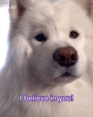This good girl has a message for everyone! 😍😍  Coconut Rice Bear: believe in Vou! This good girl has a message for everyone! 😍😍  Coconut Rice Bear