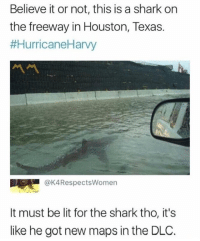 Lit, Shark, and Houston: Believe it or not, this is a shark on  the freeway in Houston, Texas.  #HurricaneHarvy  서서  @K4RespectsWomen  It must be lit for the shark tho, it's  like he got new maps in the DLC.