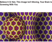 Gif, Weird, and Brain: Believe lt Or Not, This Image lsn't Moving, Your Brain ls  Screwing With You So bloody weird it's not a gif.         but your brain interpreted it as a gif
