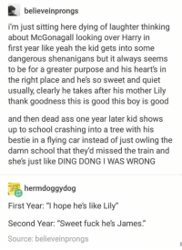 """Ass, School, and Shenanigans: believeinprongs  i'm just sitting here dying of laughter thinking  about McGonagall looking over Harry in  first year like yeah the kid gets into some  dangerous shenanigans but it always seems  to be for a greater purpose and his heart's in  the right place and he's so sweet and quiet  usually, clearly he takes after his mother Lily  thank goodness this is good this boy is good  and then dead ass one year later kid shows  up to school crashing into a tree with his  bestie in a flying car instead of just owling the  damn school that they'd missed the train and  she's just like DING DONG I WAS WRONG  hermdoggydog  First Year: """"l hope he's like Lily""""  Second Year: """"Sweet fuck he's James.""""  Source: believeinprongs"""