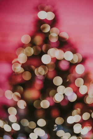 bellabucchiotti: What it's Like Having a Birthday on Christmas   For my fellow December babies who feel like their birthday on Christmas  is forgotten because it is overshadowed by a fat guy with presents came  down the chimney – this one's for you.   READ MORE HERE about why it is not fun having a birthday on Christmas Day. You can also follow Bella Bucchiotti on her Blog, Instagram and YouTube!! Image:    Annie Spratt   : bellabucchiotti: What it's Like Having a Birthday on Christmas   For my fellow December babies who feel like their birthday on Christmas  is forgotten because it is overshadowed by a fat guy with presents came  down the chimney – this one's for you.   READ MORE HERE about why it is not fun having a birthday on Christmas Day. You can also follow Bella Bucchiotti on her Blog, Instagram and YouTube!! Image:    Annie Spratt