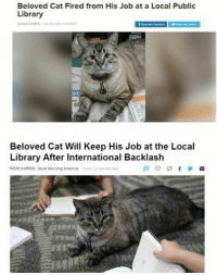 Good Morning, Good, and Library: Beloved Cat Fired from His Job at a Local Public  Library  ar  Beloved Cat Will Keep His Job at the Local  Library After International Backlash  RİCKI HARRIS, Good Morning Amenca  1 hour 22 munutes ago