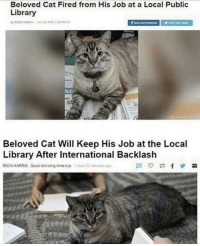 Wholesome ❤️ via /r/wholesomememes http://bit.ly/2FA34PX: Beloved Cat Fired from His Job at a Local Public  Library  Beloved Cat Will Keep His Job at the Local  Library After International Backlash  RICKS HARRIS, Good Morning Amenca 1  22u Wholesome ❤️ via /r/wholesomememes http://bit.ly/2FA34PX