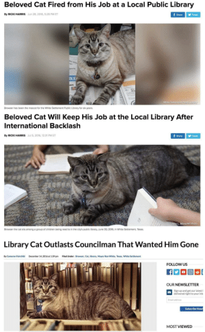 The trilogy has been completed: Beloved Cat Fired from His Job at a Local Public Library  By RICKI HARRIS Jun 28, 2016, 5:28 PM ET  Share Tweet  ar  White Settlement Public Library  Browser has been the mascot for the White Settlement Public Library for six years.  Beloved Cat Will Keep His Job at the Local Library After  International Backlash  By RICKI HARRIS Jul 5, 2016, 12:31 PM ET  ShareTweet  John L. Mone/AP Photo  Browser the cat sits among a group of children being read to in the city's public library, June 30, 2016, in White Settlement, Texas.  Library Cat Outlasts Councilman That Wanted Him Gone  By Cameron Fairchild  December 14,2016 at 1:39 pm  Filed Under:  Browser, Cat, library, Mayor Ron White, Texas, White Settlement  FOLLOW US  OUR NEWSLETTER  Sign up and get our latest l  delivered right to your inb  Email address  Subscribe Now  MOST VIEWED The trilogy has been completed