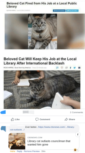 America, Meme, and Reddit: Beloved Cat Fired from His Job at a Local Public  Library  er  y RICKI HARRIS 26 206 528 PMET  fh wth Facebock  ar  an  w  Beloved Cat Will Keep His Job at the Local  Library After International Backlash  1 hour 22 minutes ago  f  =  RICKI HARRIS, Good Morning America  2 Comments  Like  Share  Comment  Ever better.. https://www.cbsnews.com/../library-  cat-outlasts...  i  CBSNEWS.COM  Library cat outlasts councilman that  wanted him gone  Haha Reply Remove Preview 39m Unexpected addition to meme improves it greatly.